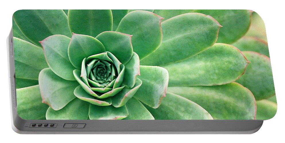 Plants Portable Battery Charger featuring the photograph Succulents II by Angie Schutt