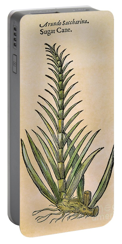 1597 Portable Battery Charger featuring the photograph Sugar Cane, 1597 by Granger