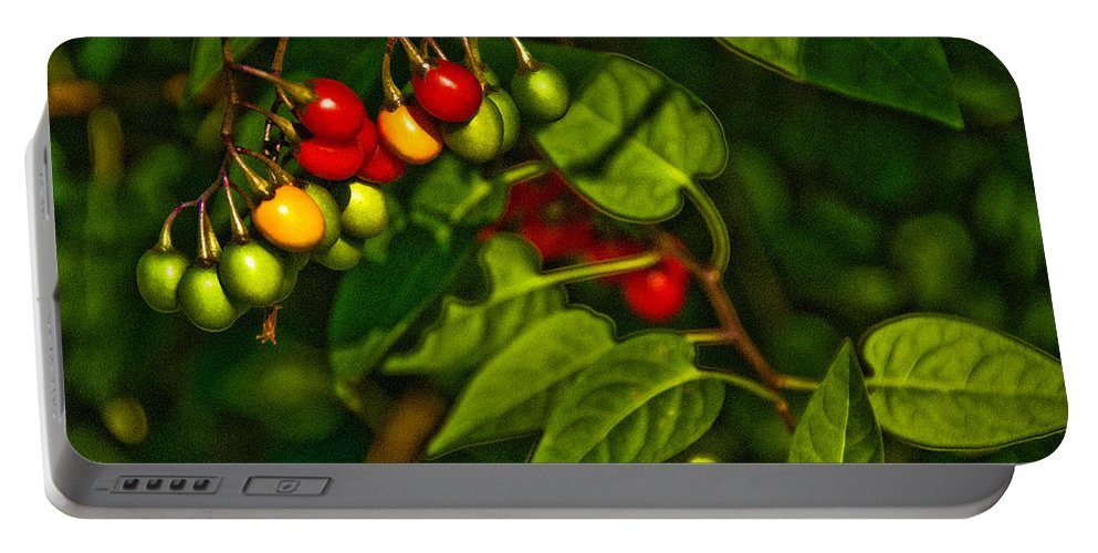 Berries Portable Battery Charger featuring the photograph Summer Berries by Onyonet Photo Studios