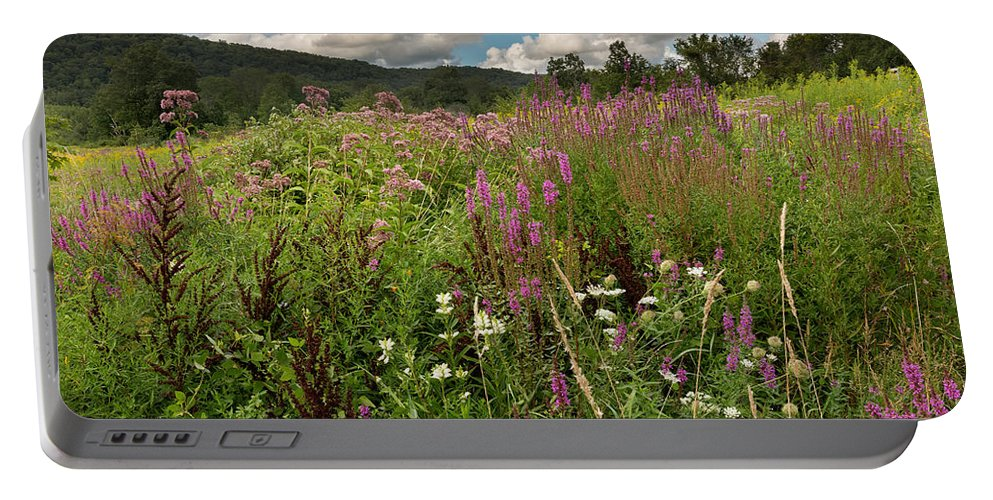 Wildflowers Portable Battery Charger featuring the photograph Summer Blooms by Bill Wakeley