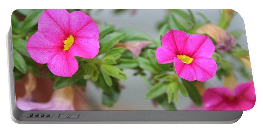 Flowers Portable Battery Charger featuring the photograph Summer Flowers by Linda Sannuti