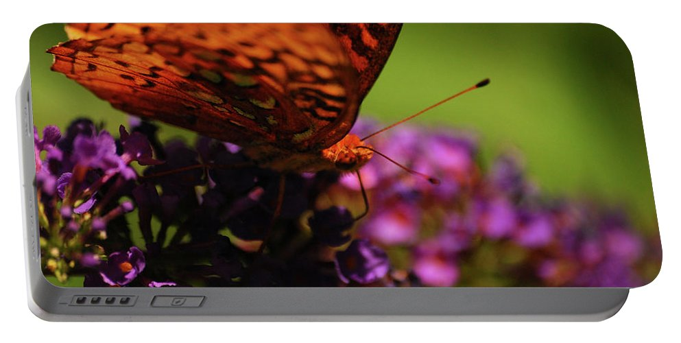 Butterfly Portable Battery Charger featuring the photograph Summer Glow by Lori Tambakis