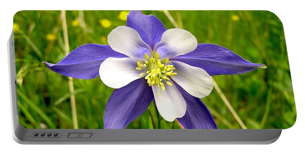 Plant Portable Battery Charger featuring the photograph Summer In The Rockies by Carol Milisen