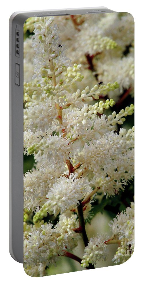 White Astible Portable Battery Charger featuring the photograph Summer Snow by Kim Tran