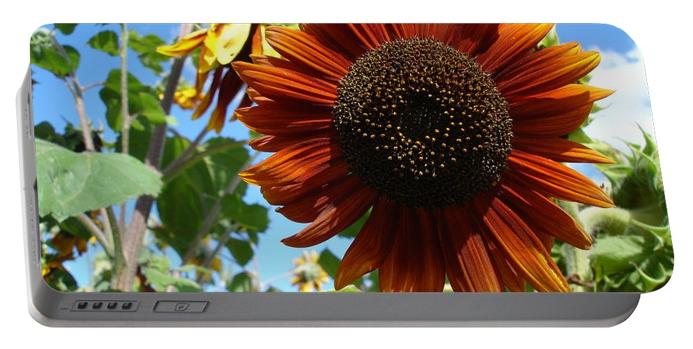 Sunflower Portable Battery Charger featuring the photograph Summers Here by Susan Baker