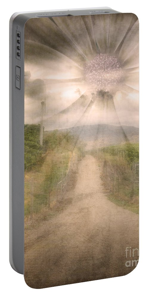 Flower Portable Battery Charger featuring the photograph Summer's Last Light by Tara Turner