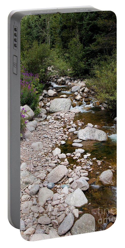 Stream Portable Battery Charger featuring the photograph Summertime by Madeline Ellis