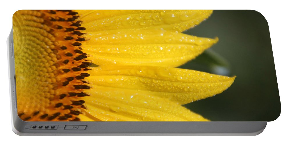 Sun Portable Battery Charger featuring the photograph Sun East by Carolyn Stagger Cokley