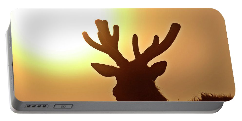 Elk Portable Battery Charger featuring the digital art Sun Glaring Over A Bull Elk by Mark Duffy