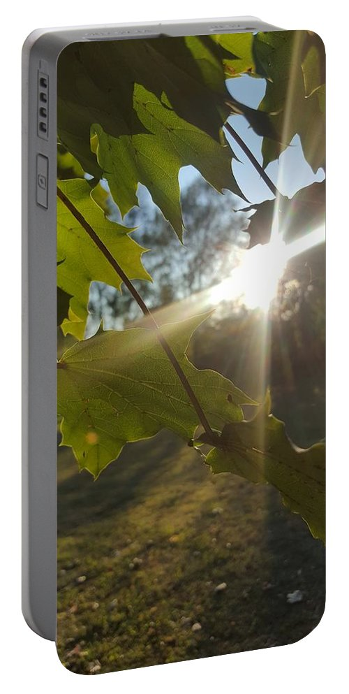Photography Portable Battery Charger featuring the photograph Summer Leaves by Larry Lefler