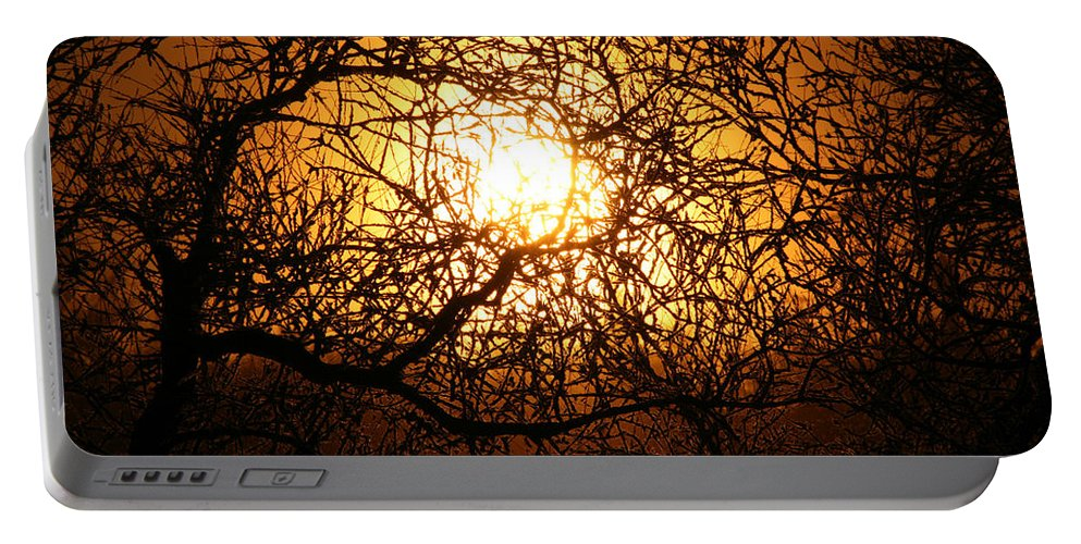 Sun Rise Trees Yellow Gold Plants Shine Colorful Bright Sky Portable Battery Charger featuring the photograph Sun Tree by Andrea Lawrence