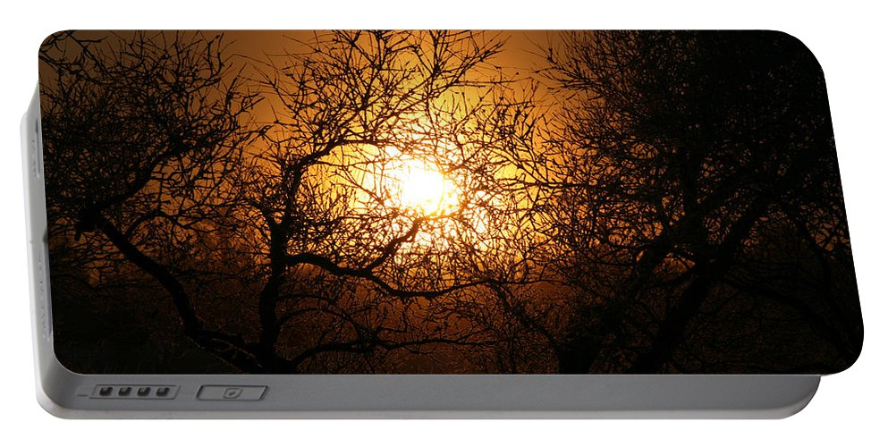 Sun Rise Trees Yellow Gold Plants Shine Colorful Bright Sky Portable Battery Charger featuring the photograph Sun Trees by Andrea Lawrence