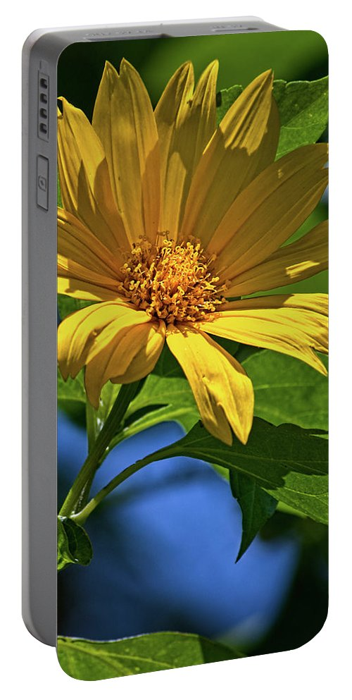 Flower Portable Battery Charger featuring the photograph Sun Yellow by Christopher Holmes