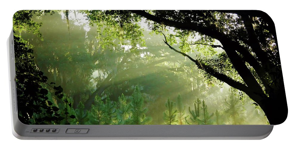 Sunrise Portable Battery Charger featuring the photograph Sunbeams In The Forest by D Hackett