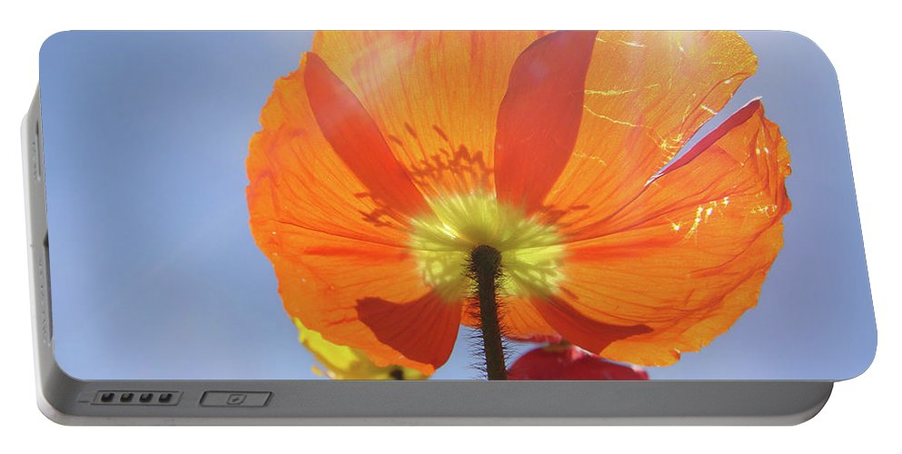 Poppy Portable Battery Charger featuring the photograph Sunburned by Donna Blackhall