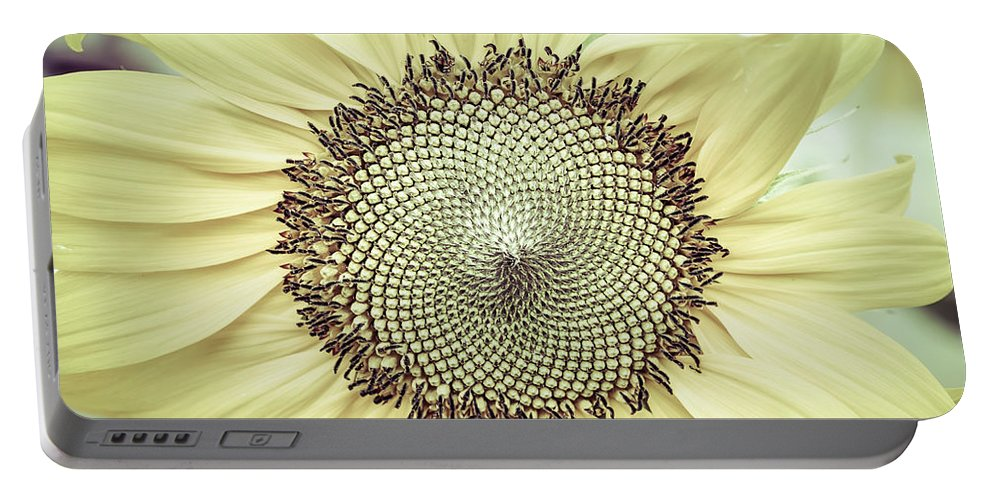 Floral Portable Battery Charger featuring the photograph Sunflower Ant by Jim Love