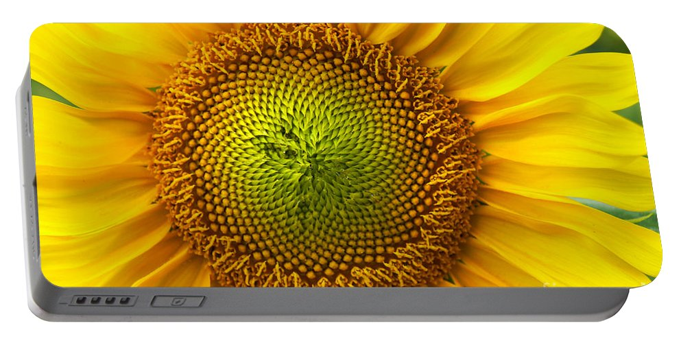 Sunflower Portable Battery Charger featuring the photograph Sunflower  by Benanne Stiens