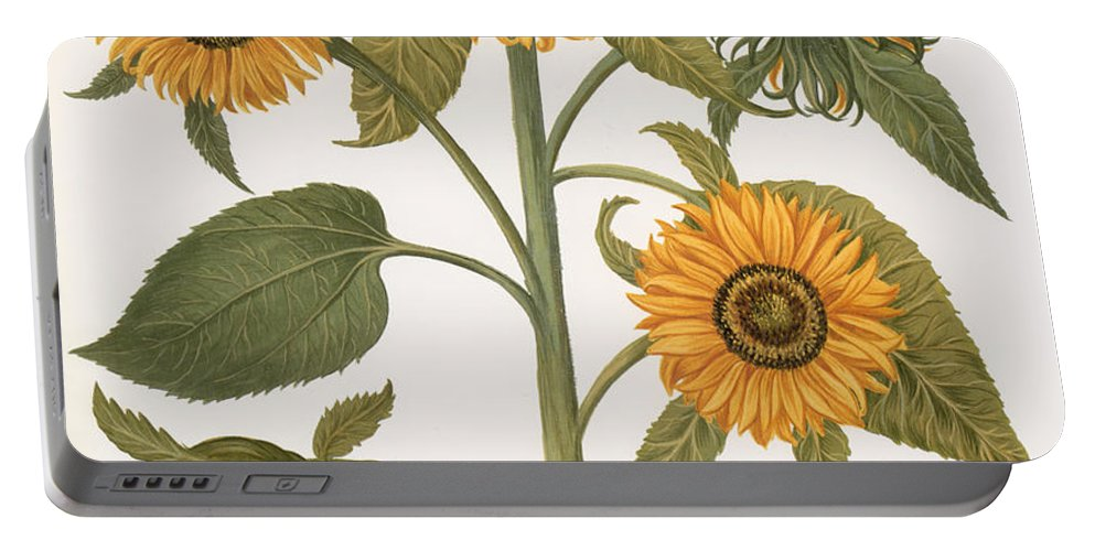 1613 Portable Battery Charger featuring the photograph Sunflower by Granger