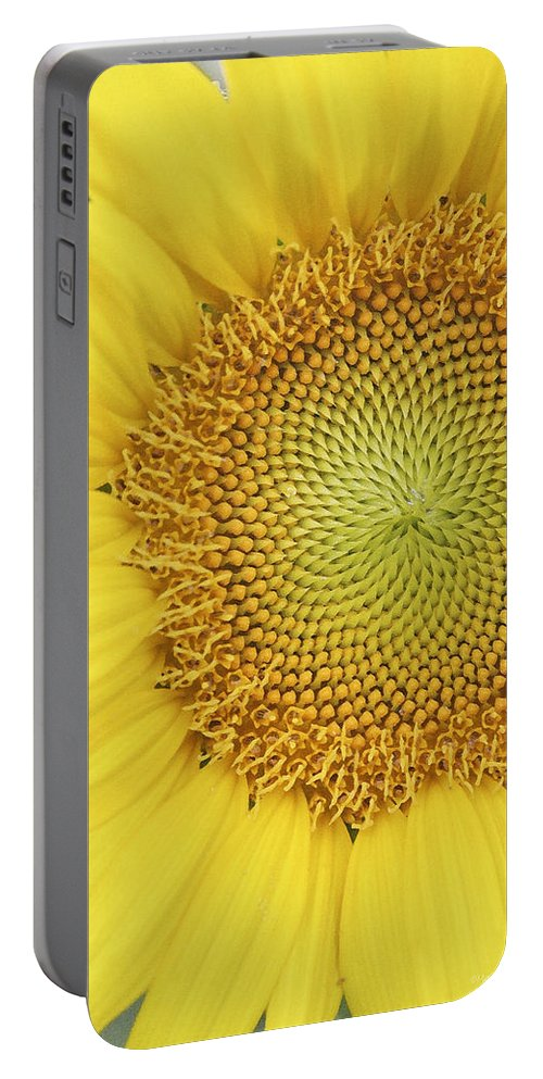 Sunflower Portable Battery Charger featuring the photograph Sunflower by Margie Wildblood