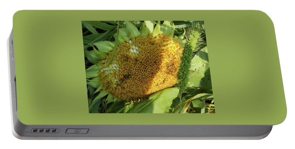 Sunflower Portable Battery Charger featuring the photograph sunflower No.2 by Susan Crowell