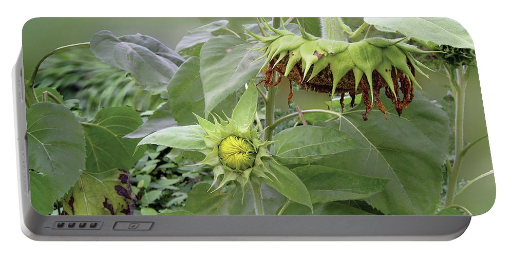 Sunflower Portable Battery Charger featuring the photograph sunflower No.7 by Susan Crowell