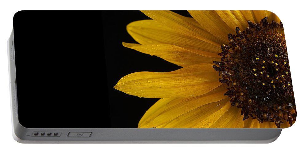 Sunflower Portable Battery Charger featuring the photograph Sunflower Number 3 by Steve Gadomski