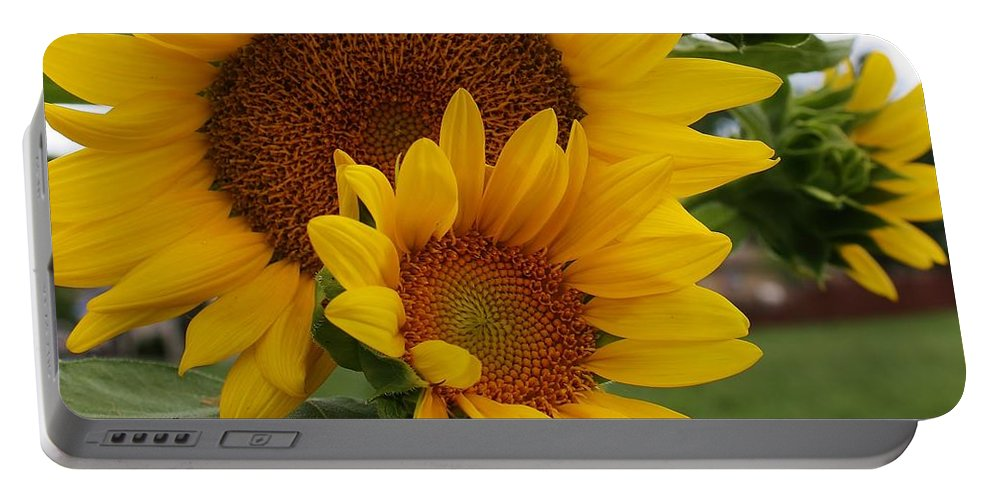 Flora Portable Battery Charger featuring the photograph Sunflower Show by Bruce Bley