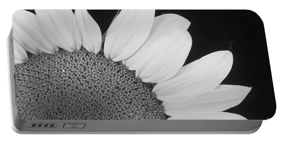 Sunflowers Portable Battery Charger featuring the photograph Sunflower Three Quarter by James BO Insogna