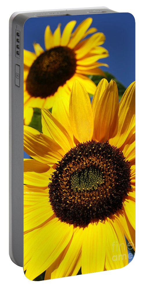 Sunflowers Portable Battery Charger featuring the photograph Sunflowers by Gaspar Avila