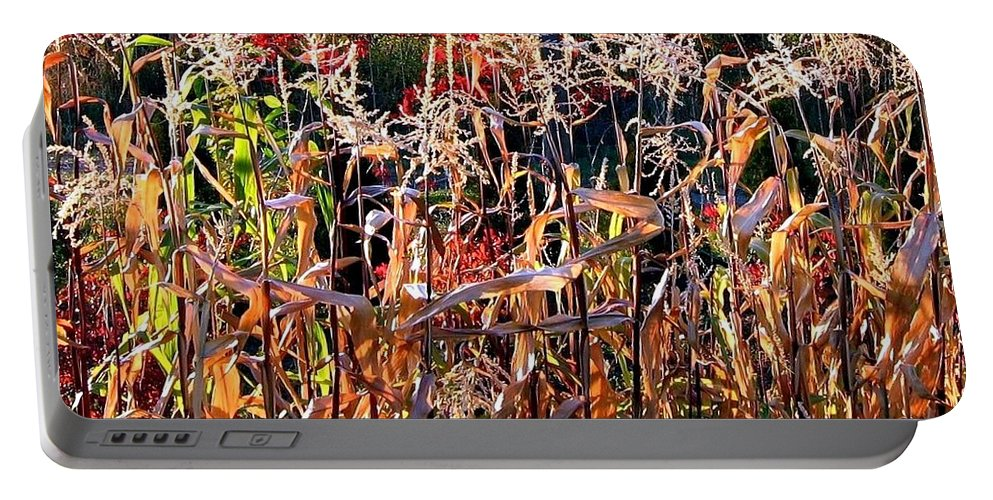 Fall Portable Battery Charger featuring the photograph Sunlit Fall Corn by Will Borden