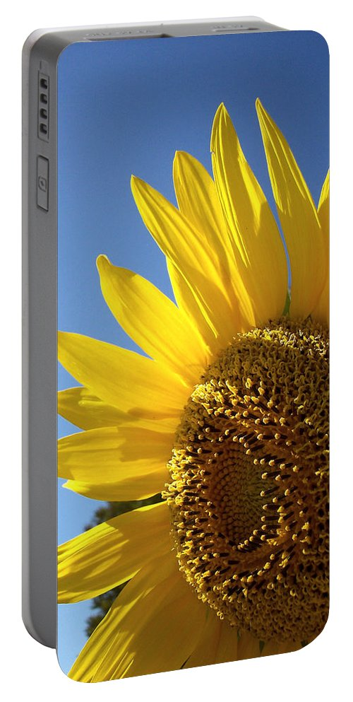 Sunflower Portable Battery Charger featuring the photograph Sunny Skies by Donna Blackhall