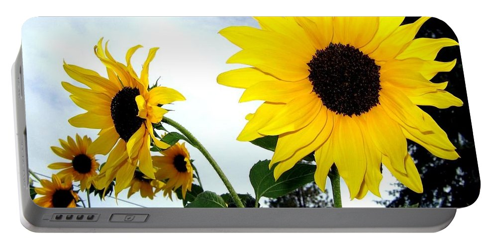 Sunflowers Portable Battery Charger featuring the photograph Sunny Slopes by Will Borden