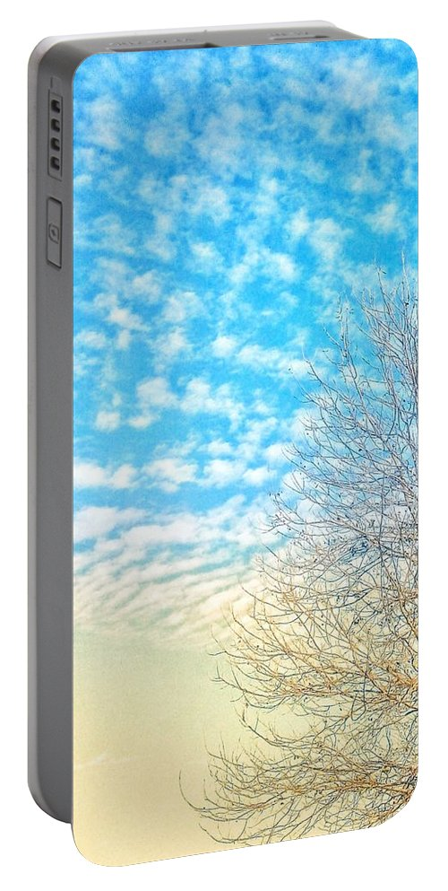 Photography Of Tree Portable Battery Charger featuring the photograph Sunny Tree by Vikas Rohilla