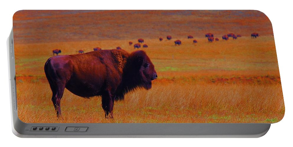 Buffalo Portable Battery Charger featuring the photograph Sunrise Watch by Amanda Smith