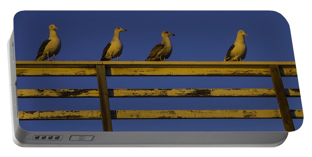 Sunset Portable Battery Charger featuring the photograph Sunset Seagulls by Garry Gay