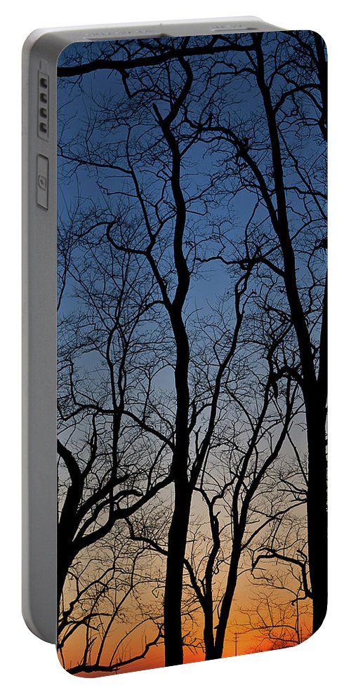 Tree Portable Battery Charger featuring the photograph Sunset Silhouette by Steve Gadomski