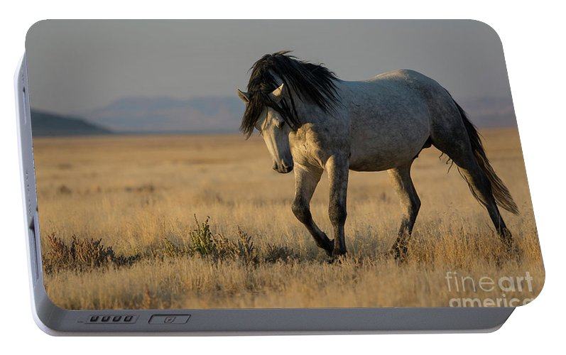 Nikon Portable Battery Charger featuring the photograph Sunset Strength by Nicole Markmann Nelson