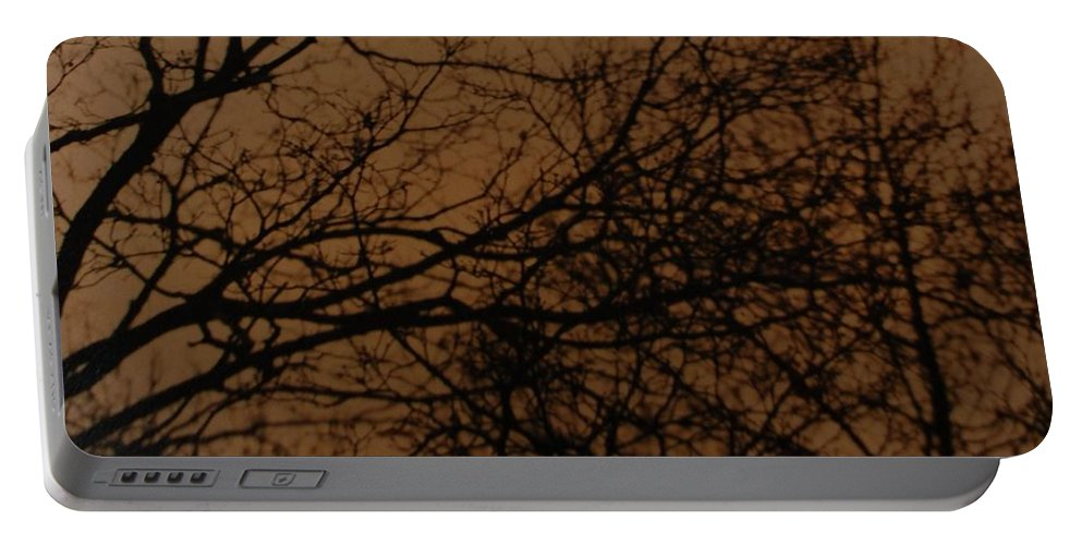 Landscape Portable Battery Charger featuring the photograph Sunset Winter by Rob Hans