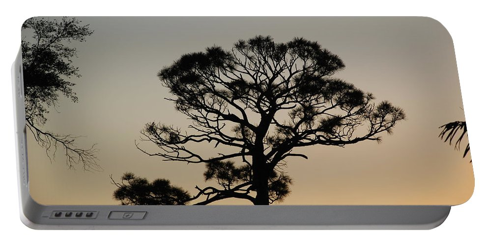 Tree Portable Battery Charger featuring the photograph Sunsetting Thru The Trees by Rob Hans
