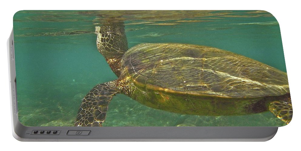 Big Portable Battery Charger featuring the photograph Surfacing Seaturtle by Michael Peychich