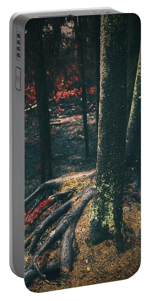 Red Portable Battery Charger featuring the photograph Surreal Red Leaves In A Dark Forest Finland by Sandra Rugina