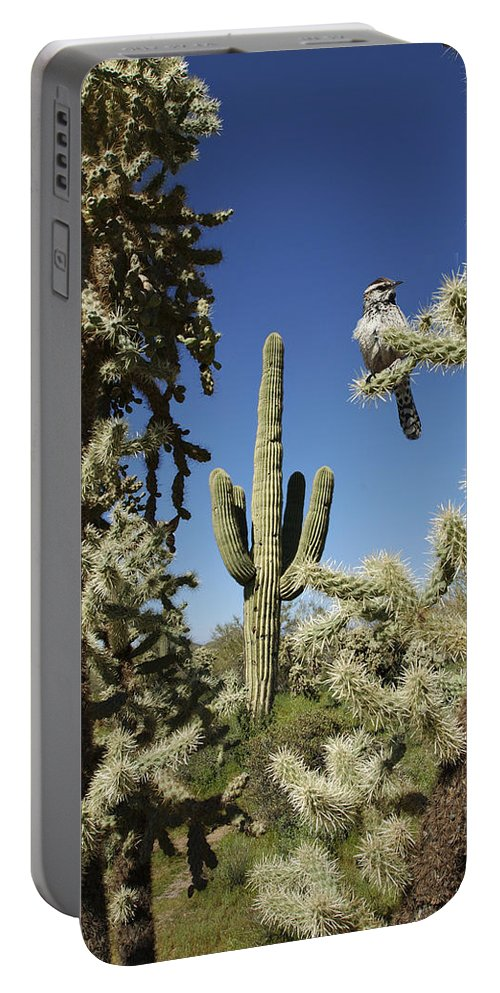 Saguaro Portable Battery Charger featuring the photograph Surrounded Saguaro Cactus Wren by Jill Reger
