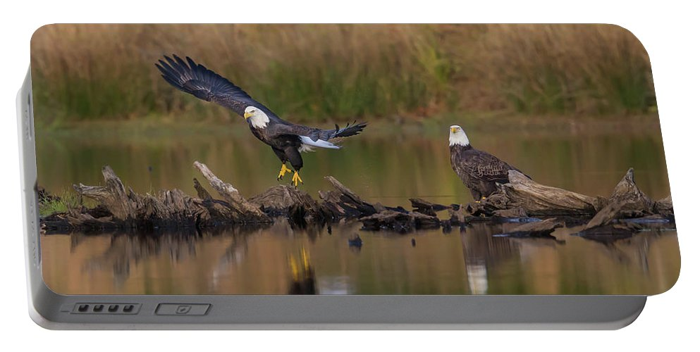Eagles Portable Battery Charger featuring the photograph Suspended Time by Rhoda Gerig