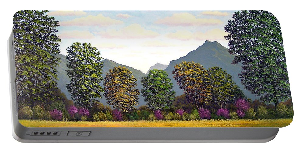 Mountains Portable Battery Charger featuring the painting Sutter Buttes In Springtime by Frank Wilson