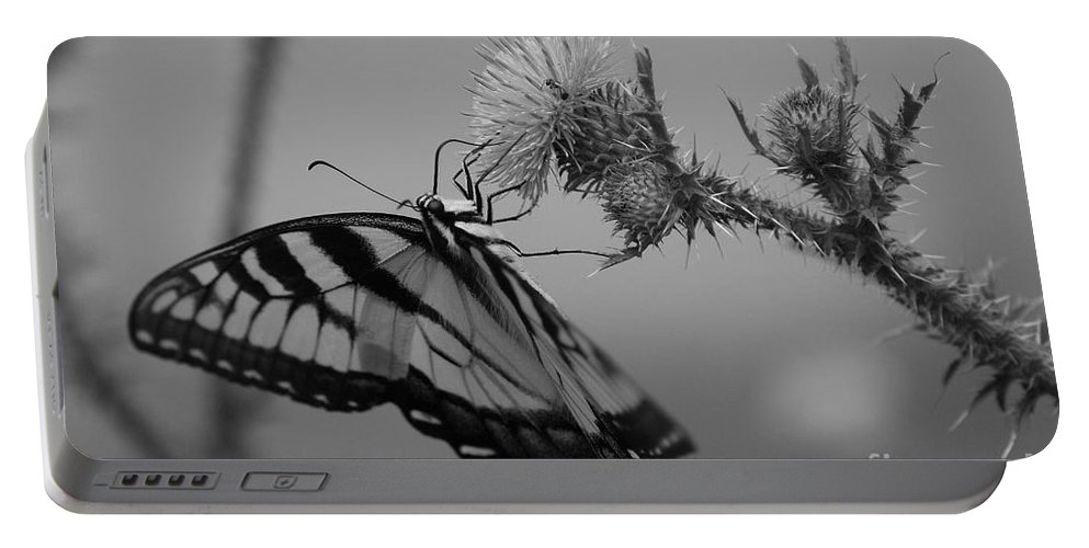 Swallowtail Portable Battery Charger featuring the photograph Swallowtail Black And White by Todd Hostetter