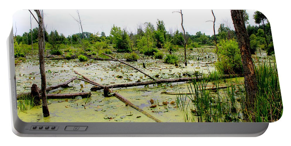 Swamp Portable Battery Charger featuring the painting Swamp Habitat by Corey Ford