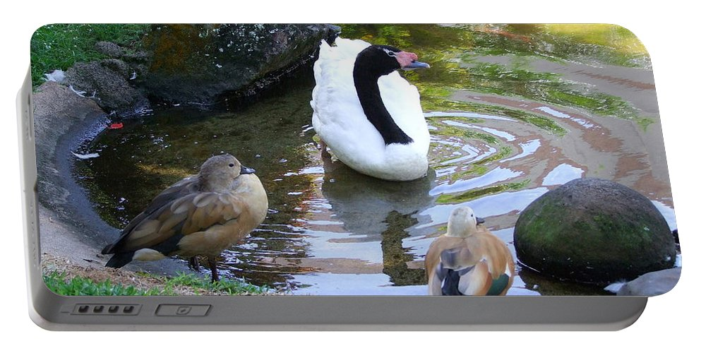 Birds Portable Battery Charger featuring the photograph Swan And Wood Ducks by Mary Deal
