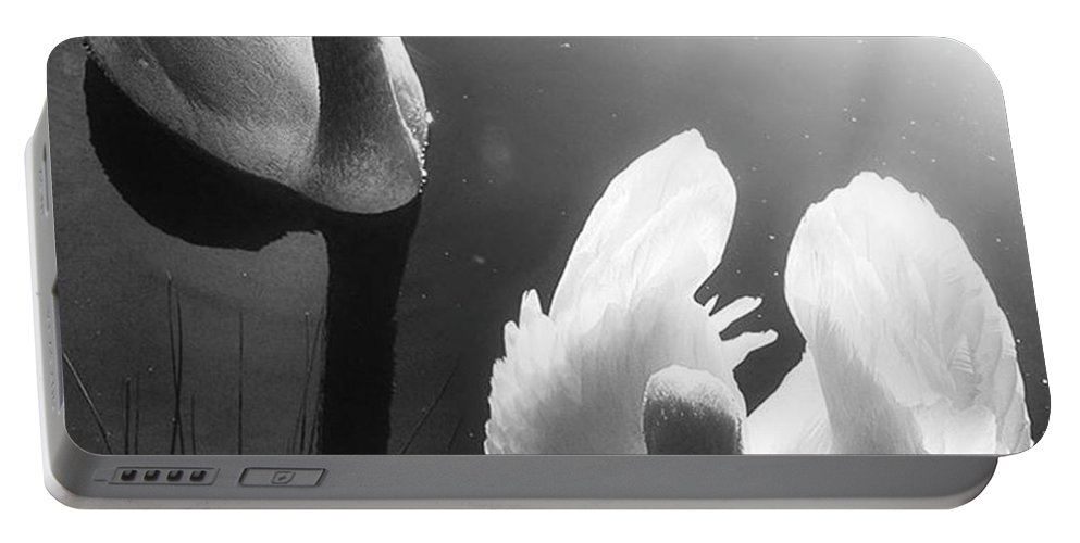 Swan Portable Battery Charger featuring the photograph Swan Lake In Winter - Kingsbury Nature by John Edwards