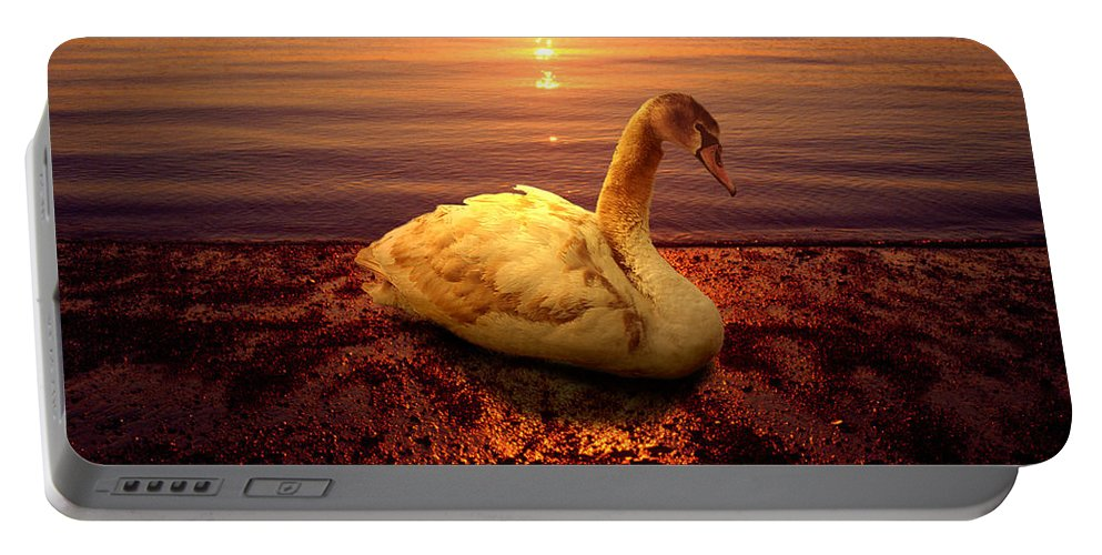 Animal Portable Battery Charger featuring the photograph Swan Lake by Yuri Lev