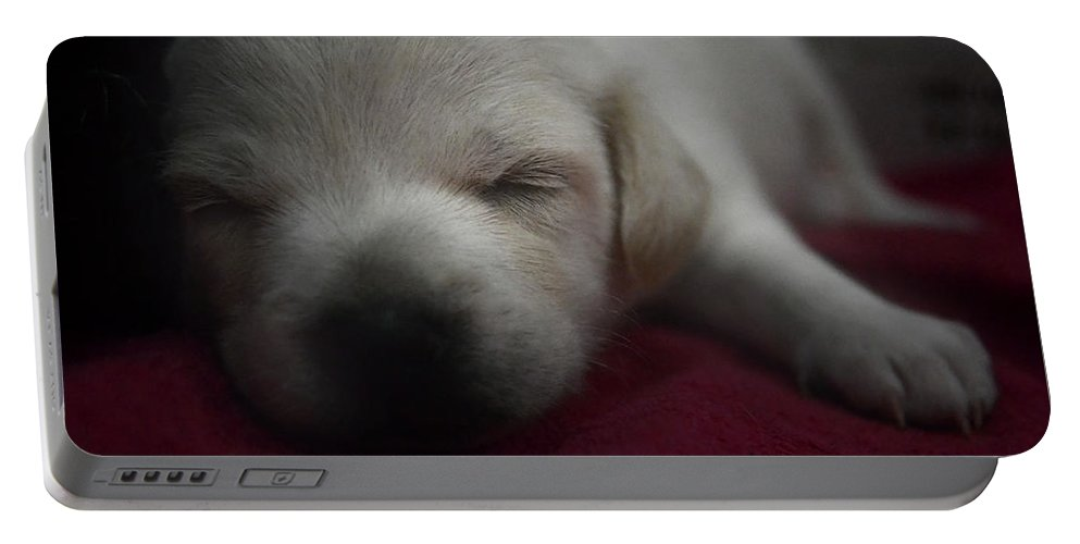 Sleep Portable Battery Charger featuring the photograph Sweet Dream by Wendy Franco Carballo